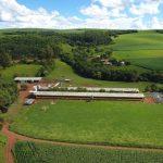 Mapeamento rural com drone